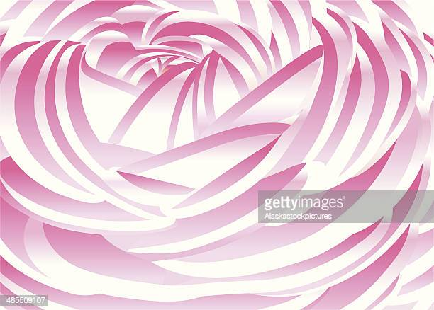 peony detail. - ranunculus stock illustrations, clip art, cartoons, & icons