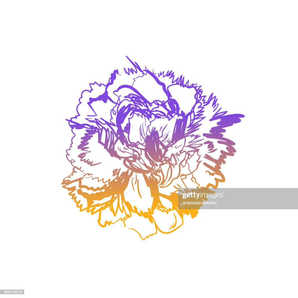 Peony flower isolated on white background. Card with a pion. Vector illustration. Flowers obscure the background
