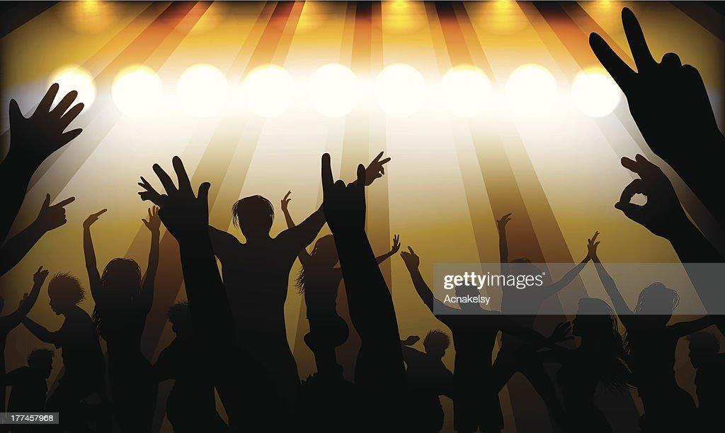 people having fun at concert