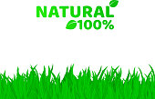 100 percent natural. Green, fresh grass on a white background. A place for your projects. Original text. Natural product. Vector illustration. EPS 8