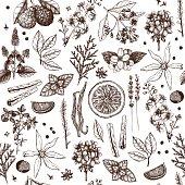 Perfumery ingredients vintage background