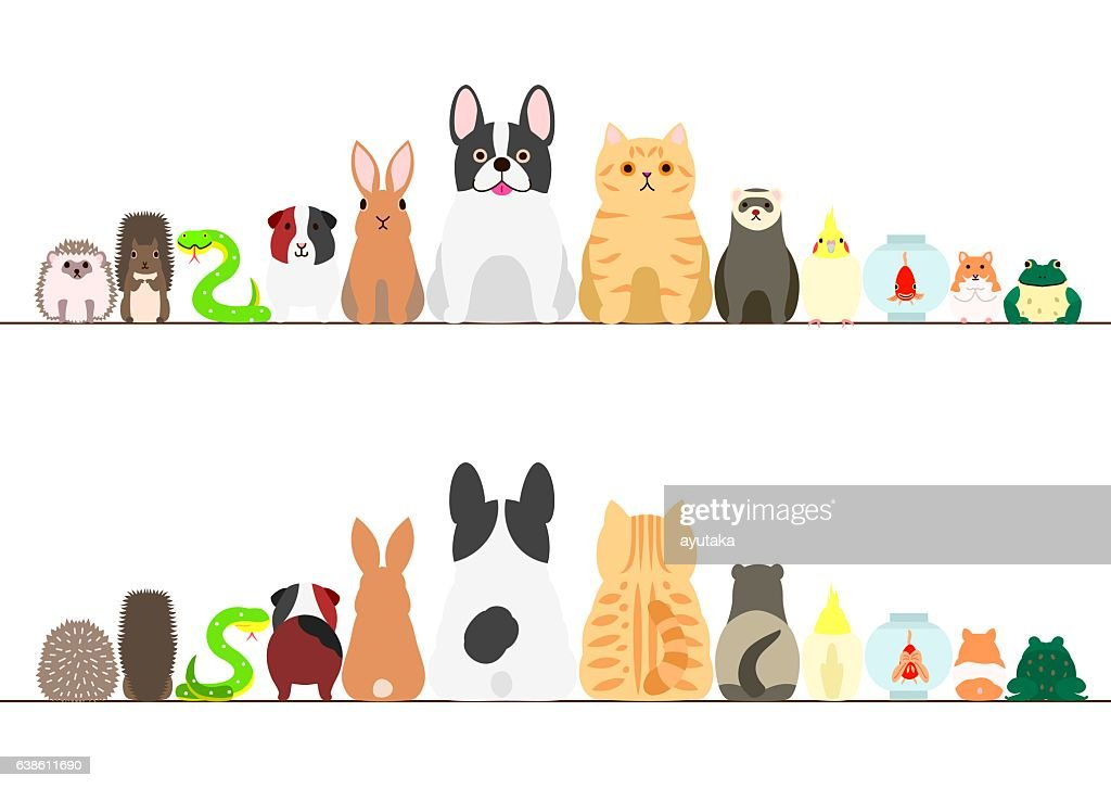pet animals border set, front view and rear view
