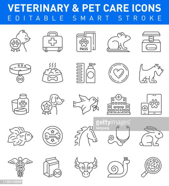 pet care and veterinary icons. editable stroke collection - pet equipment stock illustrations