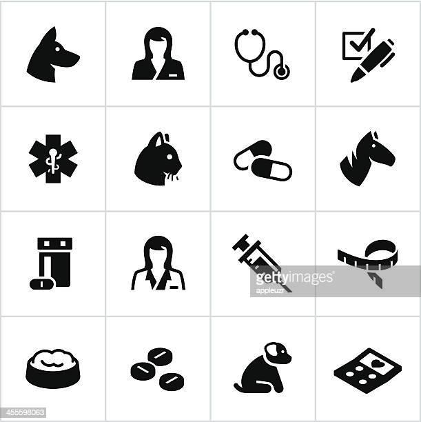 pet care icons - veterinarian stock illustrations, clip art, cartoons, & icons