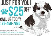 Pet grooming postcard template