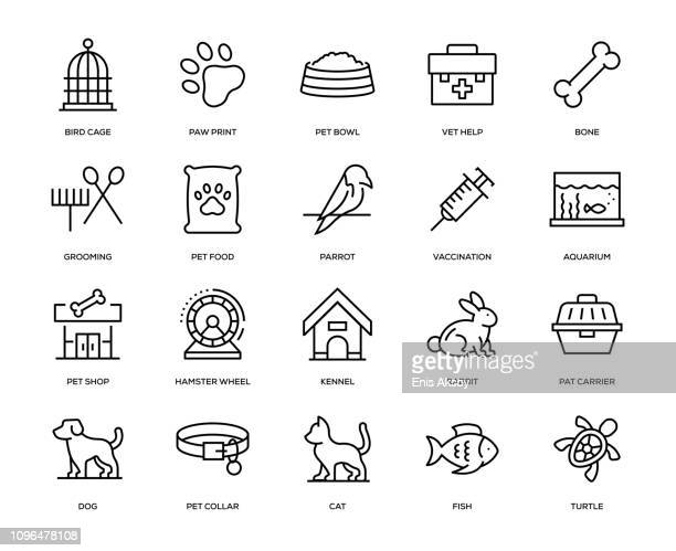 pet icon set - pet equipment stock illustrations, clip art, cartoons, & icons