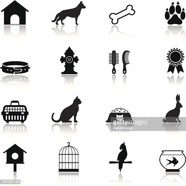 ilustrações de stock, clip art, desenhos animados e ícones de conjunto de ícones de animais de estimação - canto de passarinho