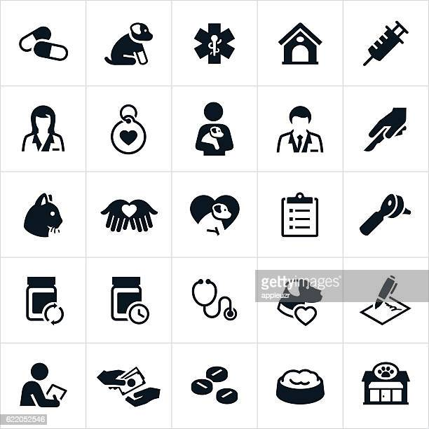 pet insurance icons - pet equipment stock illustrations, clip art, cartoons, & icons