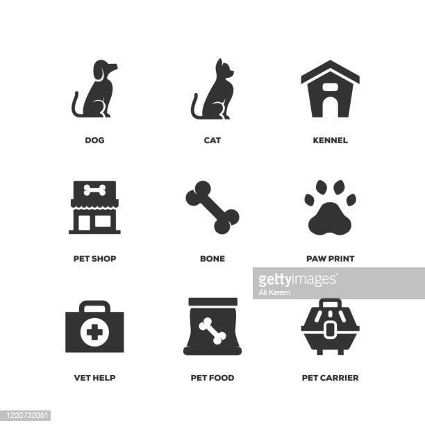 ilustraciones, imágenes clip art, dibujos animados e iconos de stock de conjunto de mascotas - ali cat
