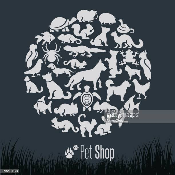 Pet Shop Collage