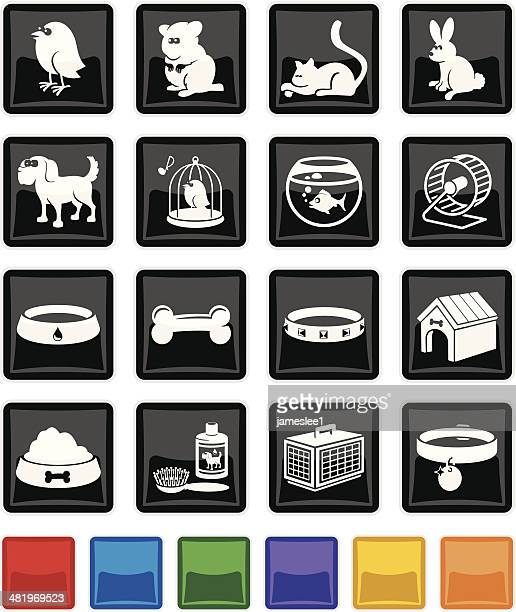 pet shop icon set - dog bowl stock illustrations, clip art, cartoons, & icons