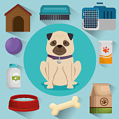 pet shop products set icons