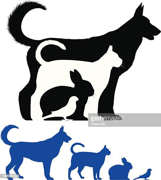 pet silhouette - rabbit animal stock illustrations, clip art, cartoons, & icons
