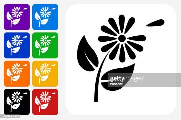 Petals Icon Square Button Set