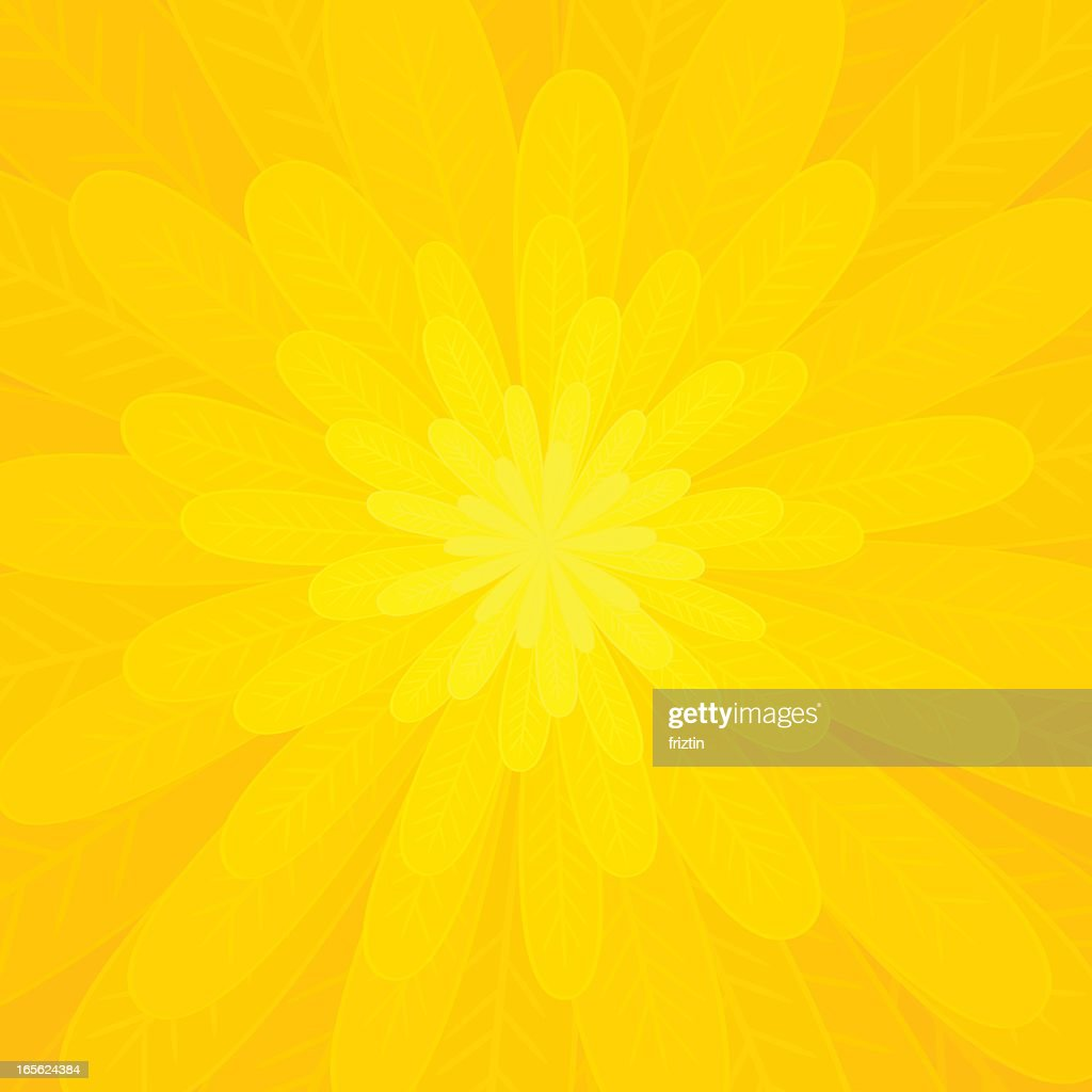 Petals of a bright yellow flower