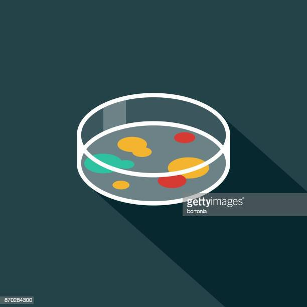 petrti dish flat design science & technology icon with side shadow - micro organism stock illustrations, clip art, cartoons, & icons