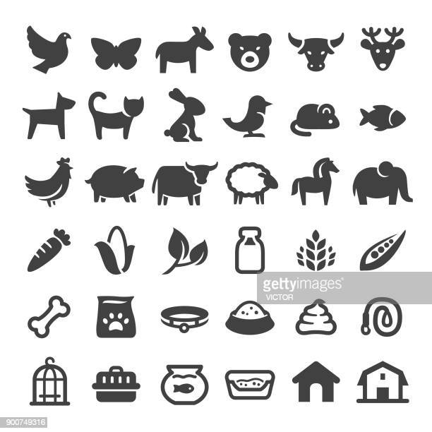 pets and zoo icons - big series - dog bone stock illustrations