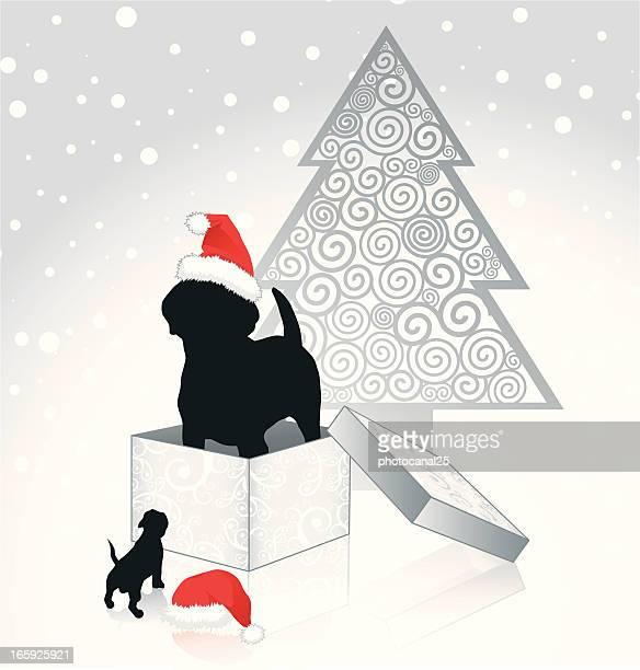 ペットのクリスマス