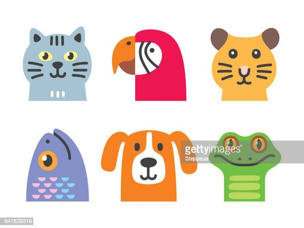 pets collection - animal stock illustrations