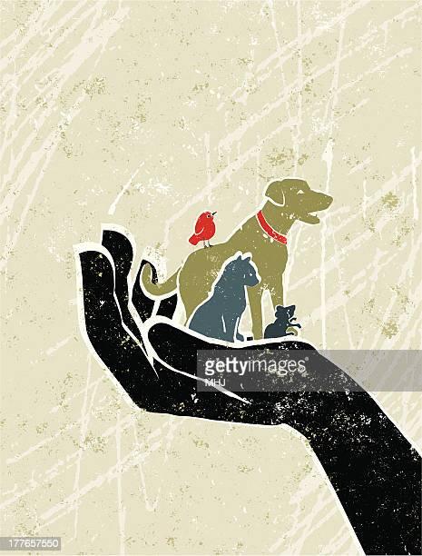 ペットの犬、猫、鳥、マウスでのジャイアントパンダ保護手