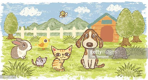 pets in nature - pampered pets stock illustrations