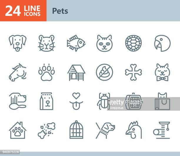pets - line vector icons - pet equipment stock illustrations, clip art, cartoons, & icons