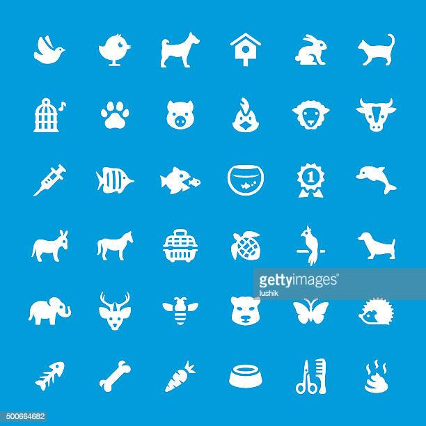 Pets vector icons set