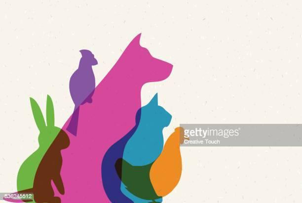 pets - undomesticated cat stock illustrations
