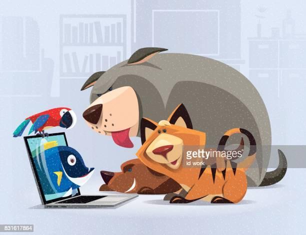 illustrations, cliparts, dessins animés et icônes de vidéo chat avec chirurgien animaux domestiques - chat humour