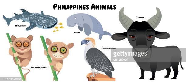 フィリピンの動物 - ジンベエザメ点のイラスト素材/クリップアート素材/マンガ素材/アイコン素材