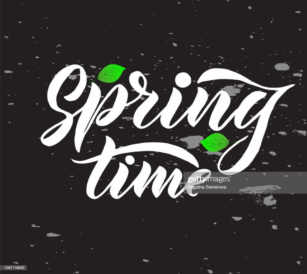 Phrase Spring Time with green leaves on chalkboard. Vector season quote.