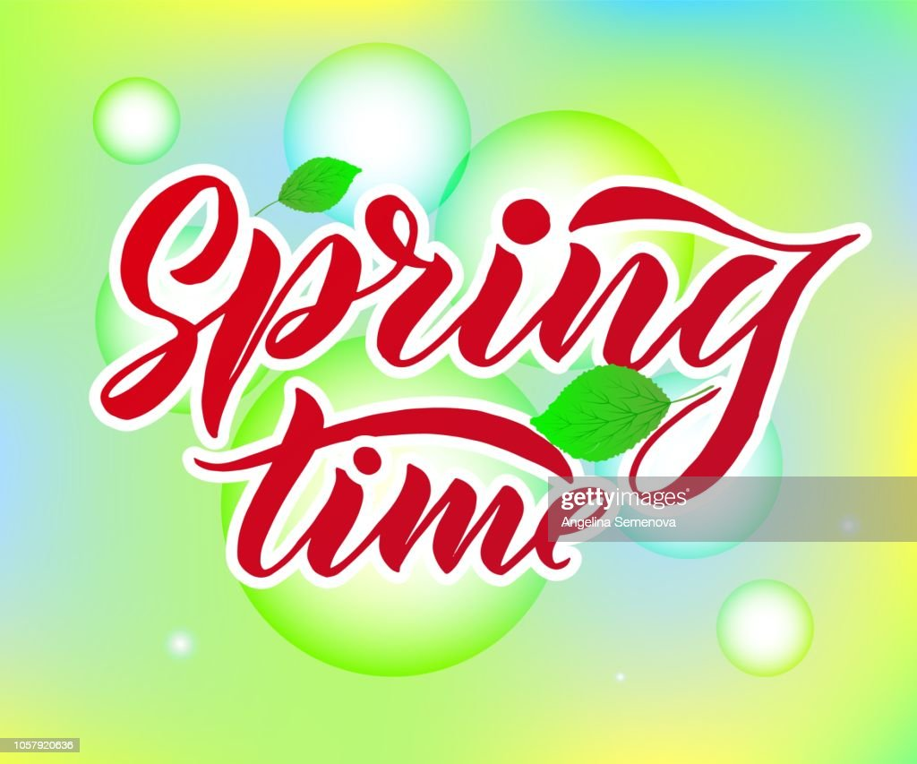 Phrase Spring Time with green leaves. Vector season quote.