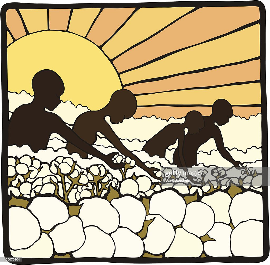 Picking Cotton