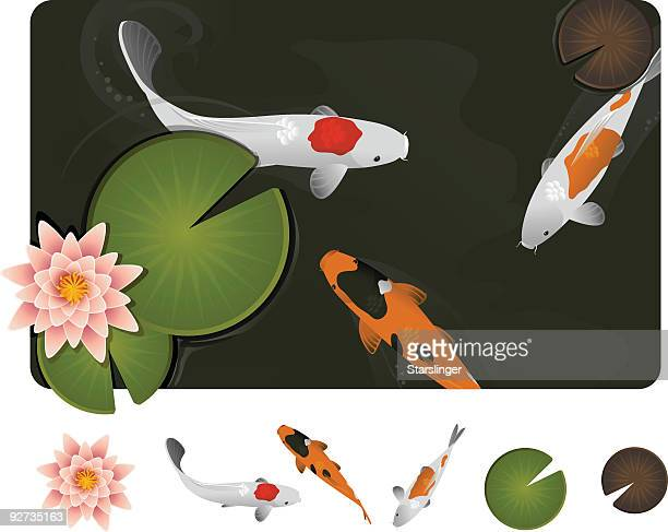 Teich vektorgrafiken und illustrationen getty images for Fische im teich winter