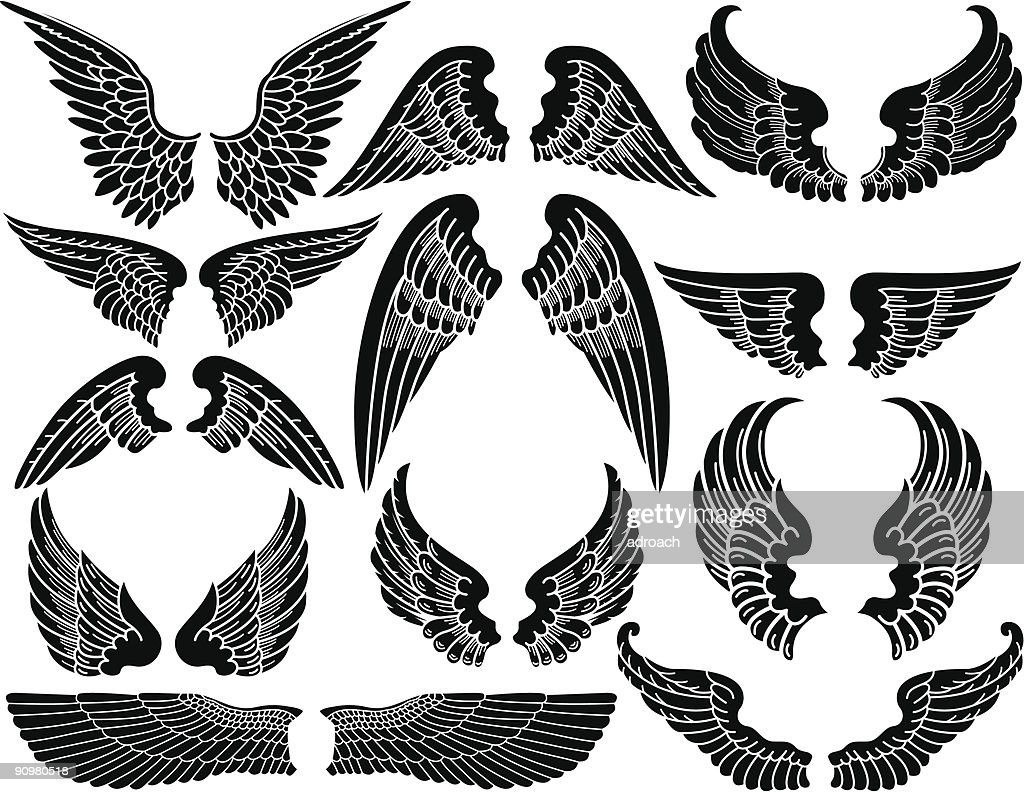 A picture of twelve sets of angel wings