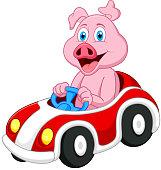 Pig cartoon driving car