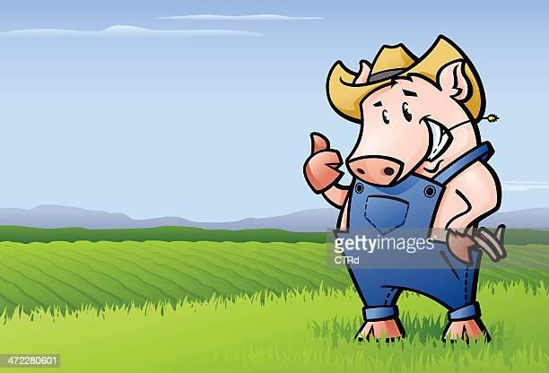 pig farmer - livestock show stock illustrations