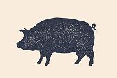 Pig, pork. Vintage label, retro print, poster for Butchery