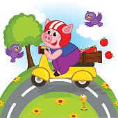 pig riding a scooter