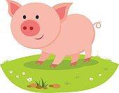 Pig smiling