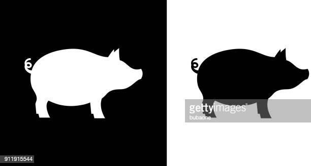 pig. - pig stock illustrations