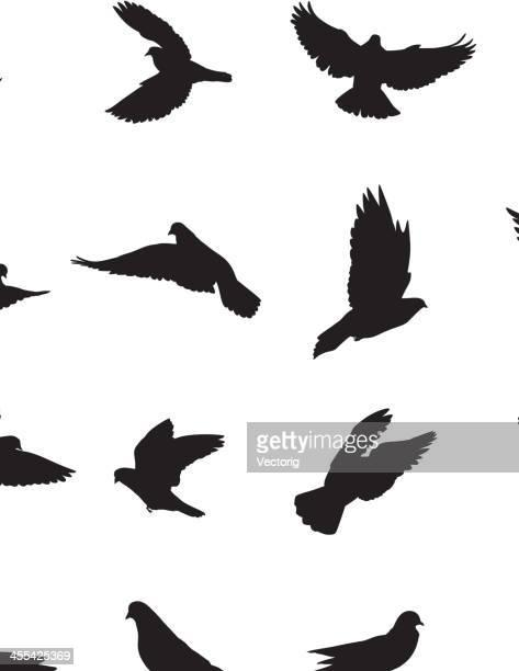 pigeons - diving stock illustrations
