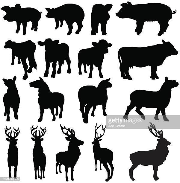 Pigs, cows, sheep and deer silhouettes