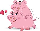 pigs humping