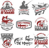 Pike fishing club. Fisherman's icons. Design elements for label, emblem, sign. Vector illustration.