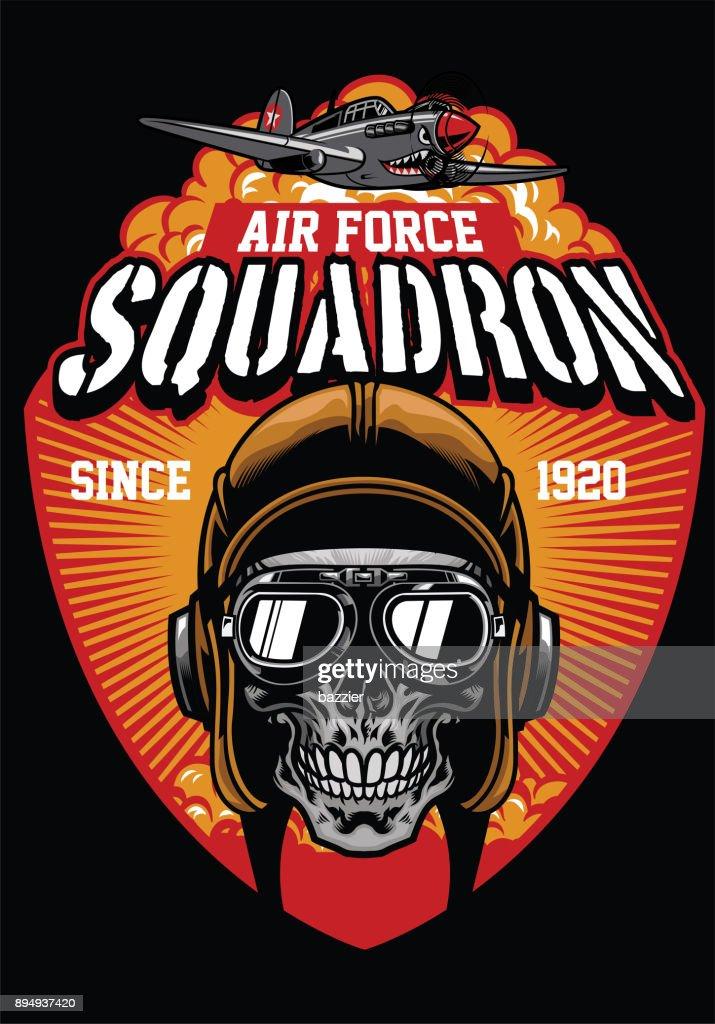 pilot air force squadron
