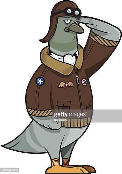 pilot pigeon - aviator's cap stock illustrations