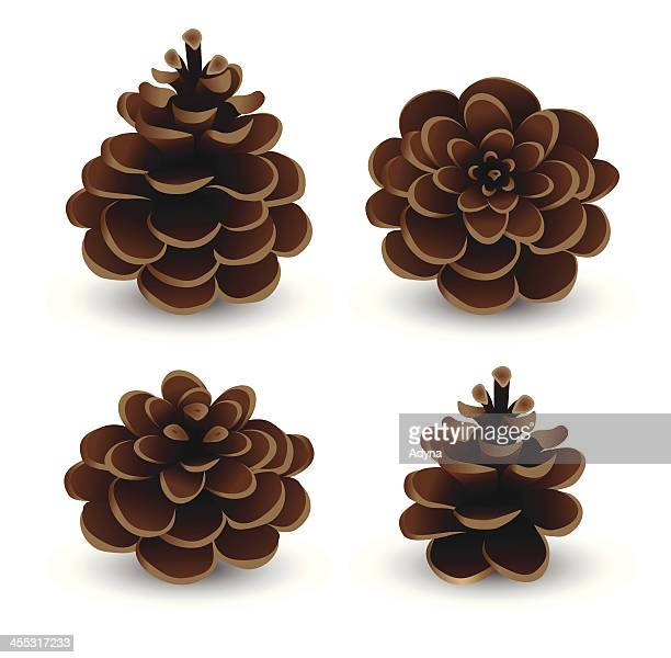 pine cone set - pine cone stock illustrations, clip art, cartoons, & icons