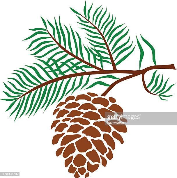 pine cone - pine cone stock illustrations, clip art, cartoons, & icons