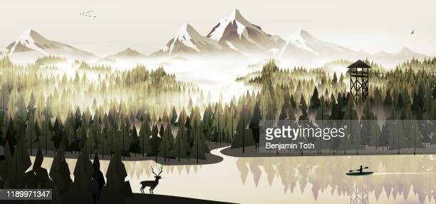 pine forest and lake with stag - mountain logo stock illustrations